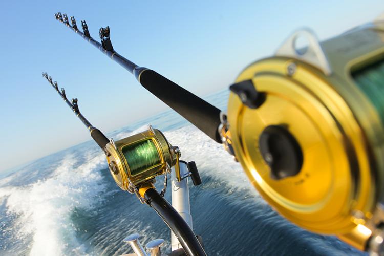 Sea Fishing Cruise