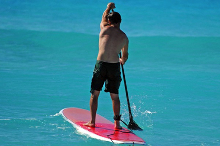 EVJF Nice Stand up Paddle
