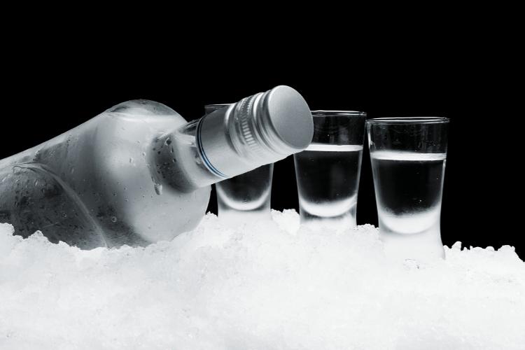 dégustation de Vodka Belgrade EVG