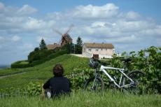 Vignoble à vélo  pour mon EVG à Reims | Enterrement de vie de garçon | idée enterrement de vie de garçon | activité enterrement de vie de garçon | idée evg | activité evg
