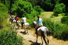 Balade à cheval  pour mon séminaire à Madrid | Séminaire | idée séminaire | voyage d'affaires | activité séminaire | Incentive | séminaire festif | collègues | congrès | colloque | meeting | conférence