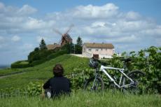 Vélo & dégustation pour mon EVG à Dijon | Enterrement de vie de garçon | idée enterrement de vie de garçon | activité enterrement de vie de garçon | idée evg | activité evg